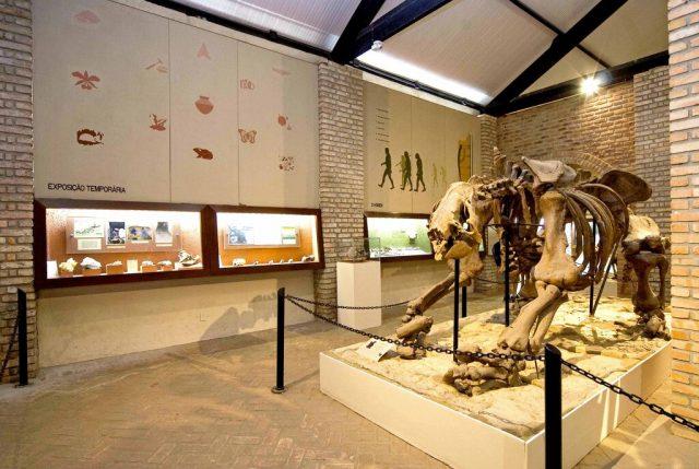exposicao-paleontologica-na-primavera-dos-museus